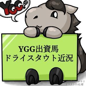 外厩のプッシュでトレセンへ!YGG出資2歳馬ドライスタウト近況(2021/07/30)