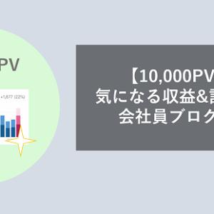 【10,000PV到達】気になる収益&記事数は?会社員ブログの実情