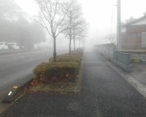 霧の中のジョグ