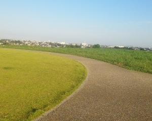 まつぶし緑の丘公園へジョグ