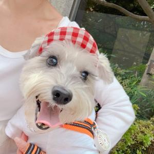愛犬の可愛さあまって散歩の途中にツーショット♪