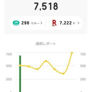 【公開】11月の副収入