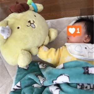 PUPPP(妊婦性痒疹)について ②