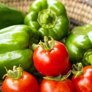 家庭菜園入門。初心者にオススメの野菜。育て方手順と始め方。
