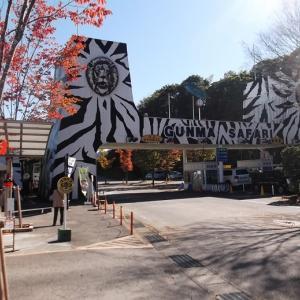 LIVE AT ぐんまサファリパーク(2020年10月25日)