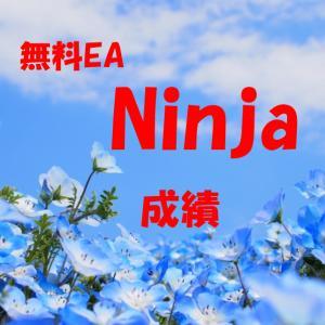 今週のナンピンマーチンは!? 無料EA Ninja成績