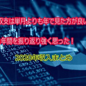 【2020年 年間まとめ】収支は単月で見るのではなく年間で見るべきだと再確認した!