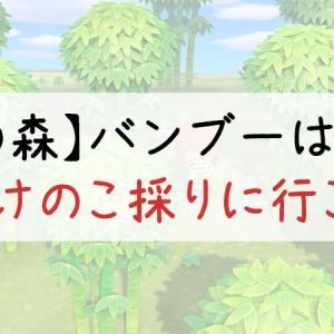 【あつ森】バンブー(竹)の入手方法と育て方【離島へ行こう】