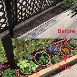 おうち時間で、庭の花壇をリニューアル!!