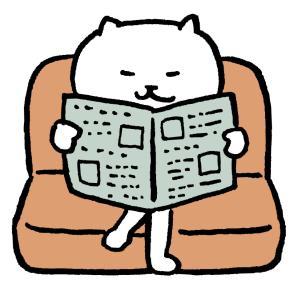 【妊娠14週目】奥さんが座りやすいソファを検討