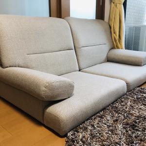 【妊娠17週目】ソファが届いた!赤ちゃんを迎えるための家具刷新開始