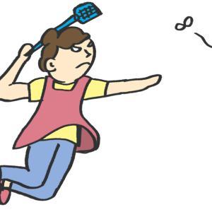 【妊娠23週目】ショウジョウバエを退治して奥さんのストレスを軽減