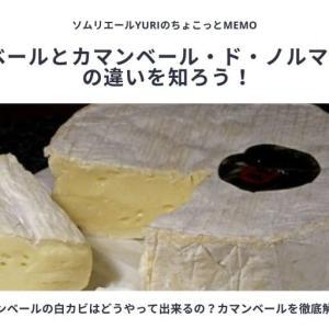 カマンベールチーズの白カビは、どうやって出来るの?カマンベールとカマンベール・ド・ノルマンディーの違いを知ろう!