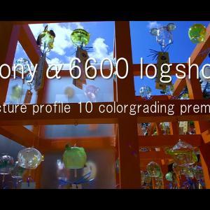 Sony α6600 × サムヤン12mm F2 / PP10 HLG(ハイブリッドログガンマ) test shot / ピクチャープロファイル10 / プレミアプロ カラーグレーディングテスト / movie vol.16