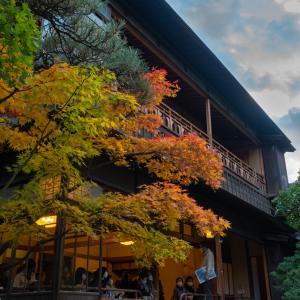 新潟市中央区 旧齋藤家別邸の紅葉スナップ / Autumn leaves snapshot at saito villa niigata / photolog vol.20