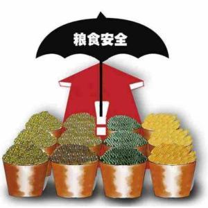 世界は50年来最悪の食糧危機だが、中国は十分足りている問題なしと中国メディア