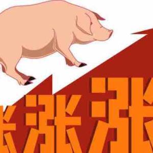 中国のアフリカ豚熱発生は予想を上回る 今年は豚肉不足か
