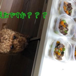『牛すじスープ』