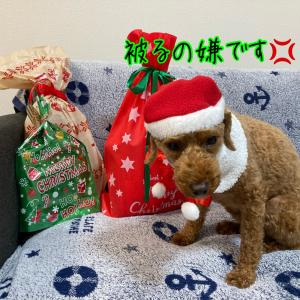 パーリーナイト~クリパプレゼント編~