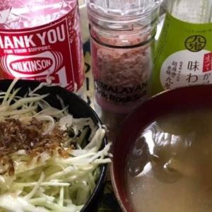 【ネギ式1週】3日目【ダイエット】