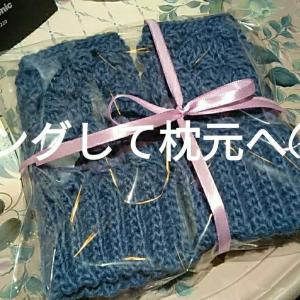 バスケット編みのハンドウォーマー娘へ🎄🎅礼儀(笑)😮ぼたんえび刺身