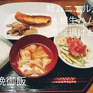 ❣️感謝SALE❣️🐼昨日は晩御飯作らず今日は鮭のムニエル