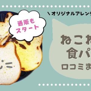 かわいい!話題のねこ型食パン「ねこねこ食パン」を徹底レビュー!アレンジ方法や通販の紹介も