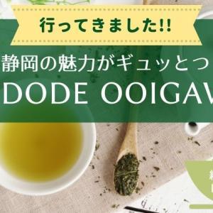 【新スポット】KADODE OOIGAWAで緑茶の魅力を体験してきた![静岡県・島田市]
