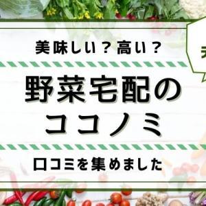 【野菜宅配】ココノミの口コミと評判!利用してわかったメリットとデメリットまとめ