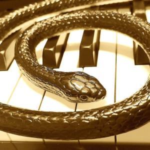 Vol.100『ヘビのティマたん』-JOC-(そら8歳)- ヘビが好きすぎて曲にしてみた -