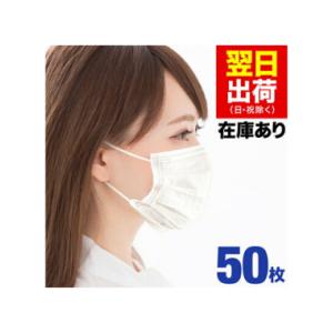 【 在庫あり 翌日(日祝を除く)に発送致します】 マスク 50枚 大人用 価格:2680円(税込、送料無料)