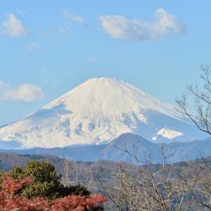 吾妻山公園ハイク
