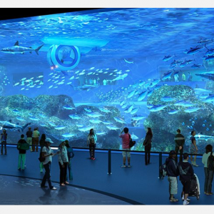 【セブ島】フィリピン最大の水族館!「Cebu Ocean Park(セブオーシャンパーク)」に行ってみた!