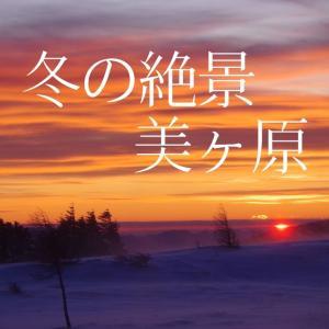 【雪山】冬入門者にオススメ。雪原広がる美ヶ原の絶景