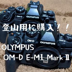 安くなった今、登山用にOLYMPUS OM-D E-M1 MarkⅡを購入しました。【E-M1 MarkⅢ、X-T4との比較あり】
