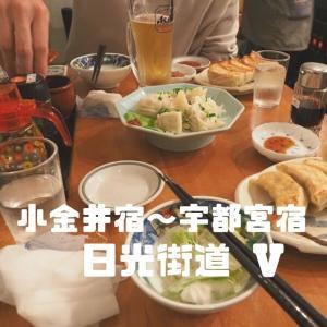 【日光街道Part5】遂に東京から100km超え!小金井宿~宇都宮宿を歩く2日目