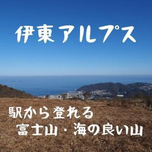 伊豆半島の伊東アルプス。駅から登れて、海も富士山の見れる穴場の山です!