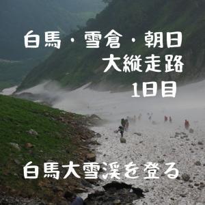 【北アルプス】白馬岳~雪倉岳~朝日岳の白馬大縦走①。白馬大雪渓を登り、白馬山荘へ。