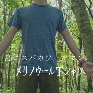 ワークマンさん、1500円メリノウール50%のTシャツって何ですか?こいつは登山で使えそうですな。