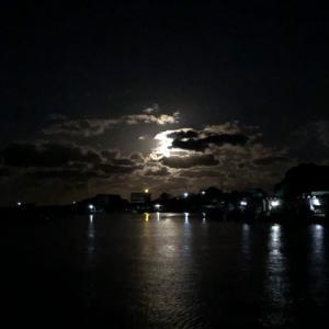 (怪談)夜釣り