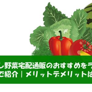 一人暮らし野菜宅配通販のおすすめをランキングで紹介 メリットデメリットは