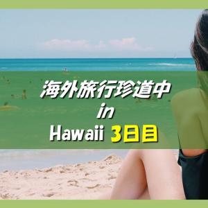 ハワイ旅行記 海外旅行どこでもトラブル珍道中 3日目