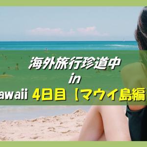 ハワイ旅行記 海外旅行どこでもトラブル珍道中 4日目【マウイ島アクティビティ編】