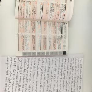 【25日目】休憩時間1時間をTOEICの学習に充てる