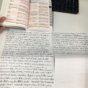 【27日目】休憩時間1時間を TOEICの学習にあてる