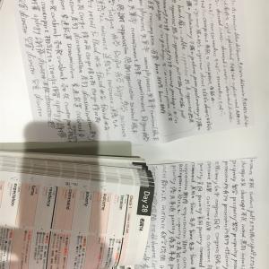 【28日目】休憩時間1時間を TOEICの学習に充てる