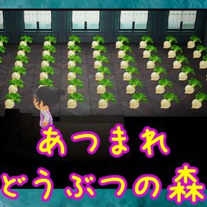 85【あつ森】カブ畑&マーメイドな家具(switch)Vlog