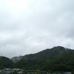 2021/06/13日曜日、曇り。