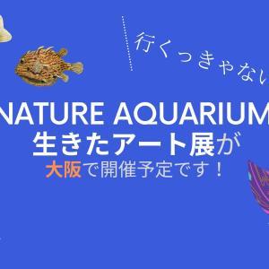 NATURE AQUARIUM 生きたアート展が大阪で開催予定です!