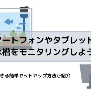 スマートフォンやタブレットから水槽をモニタリングしよう!無料でできる簡単セットアップ方法ご紹介